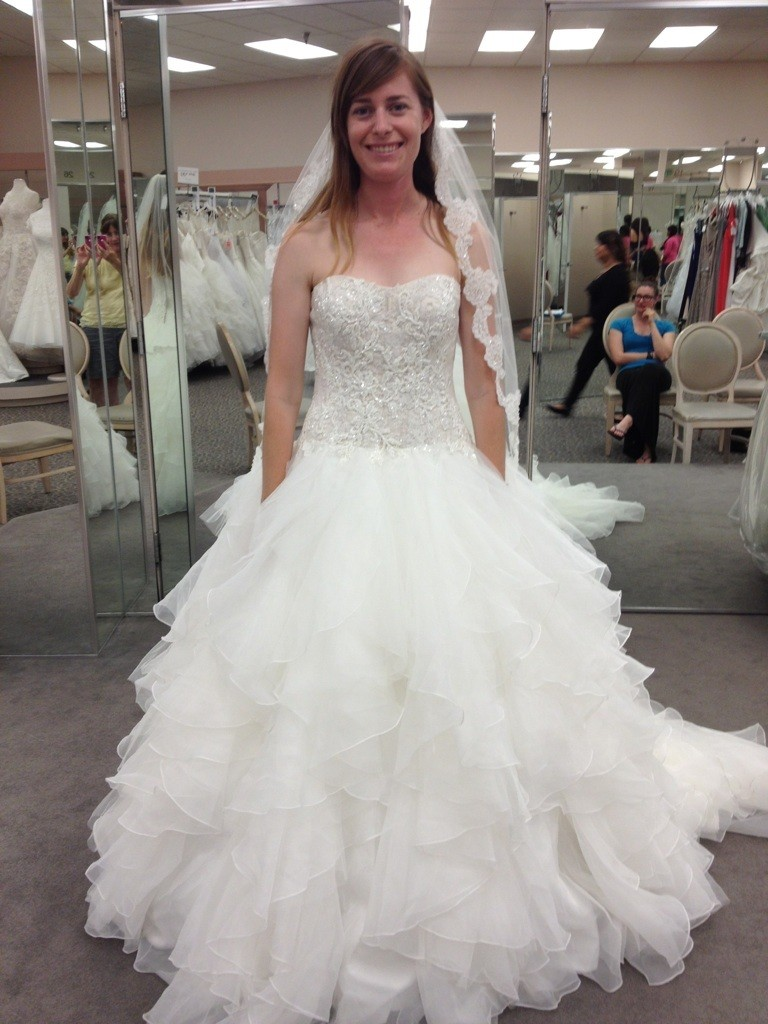 davids bridal princess wedding dresses photo - 1