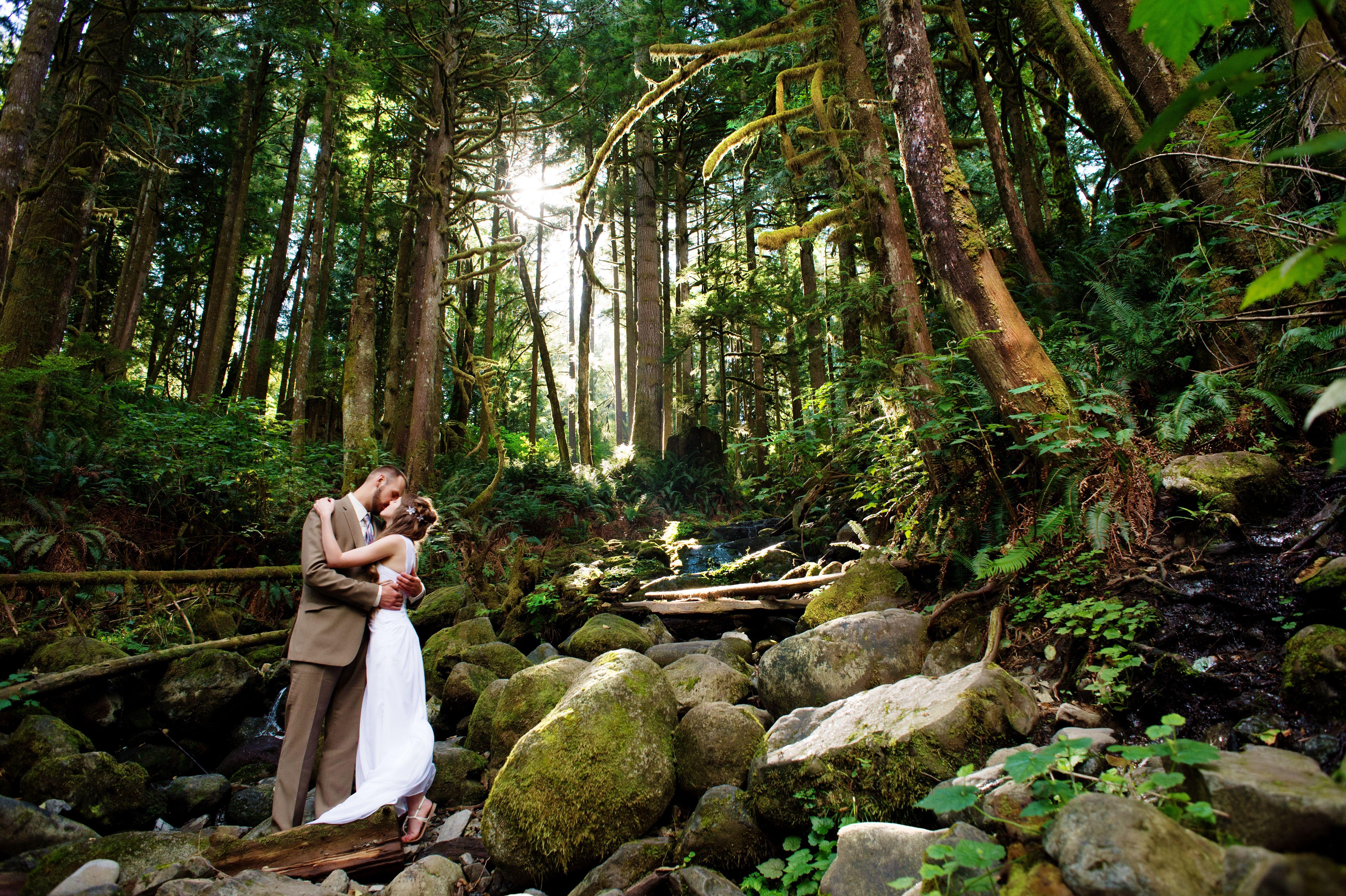 seattle wedding dresses photo - 1