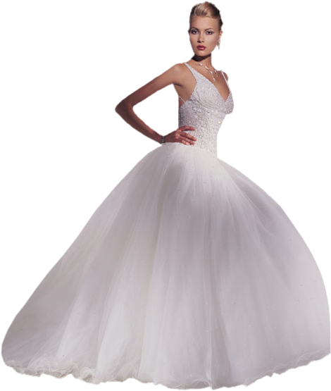 transparent wedding dresses photo - 1