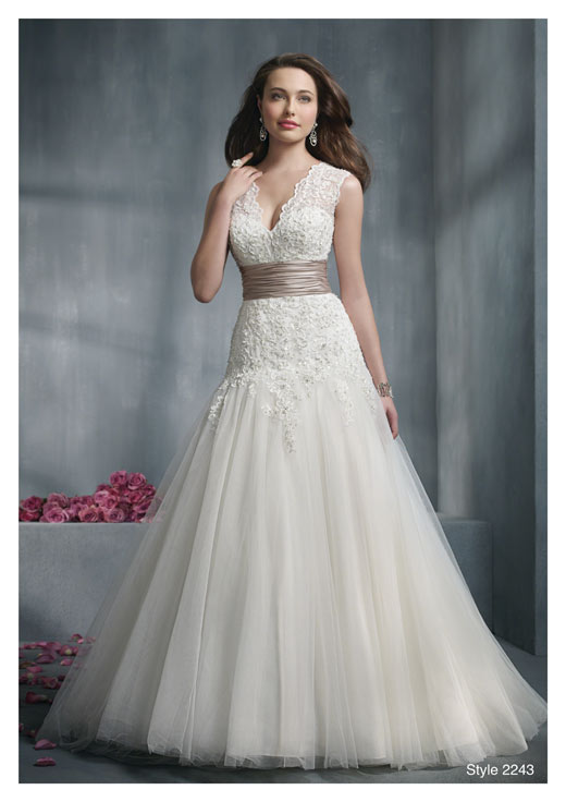 wedding dresses for large busts photo - 1