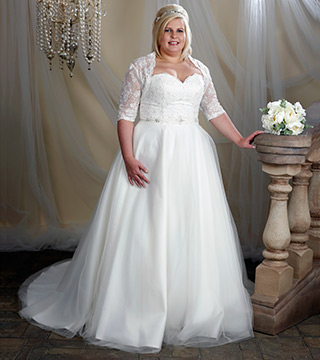 plus size wedding dresses with lace sleeves photo - 1