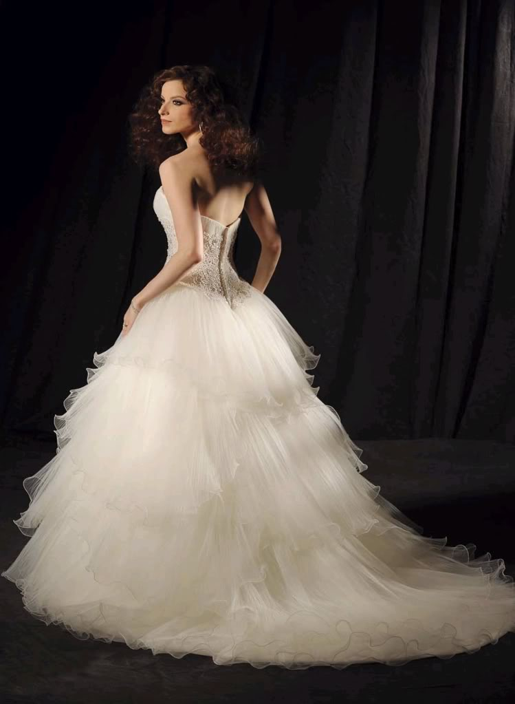 wedding dresses for petite brides vera wang photo - 1