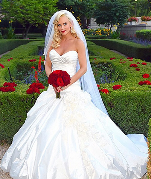 wedding dresses illinois photo - 1